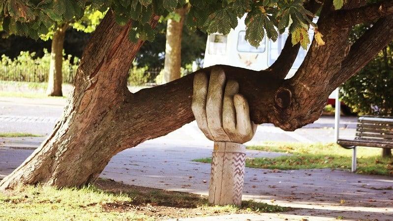 Foto av ett lutande träd som får stöd av en hand-skulptur.